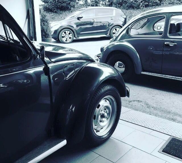 Top Cars Cronenberg